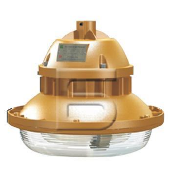 森本 防爆电磁感应灯,50W 白光,FGV1107-QL50,单位:个