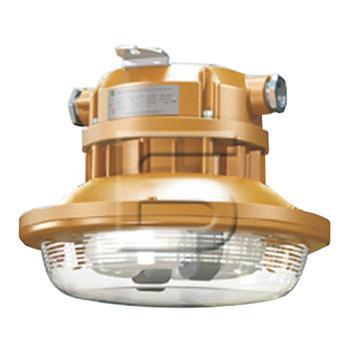森本 免维护节能防爆灯,50W电磁感应灯光源 白光,FGV1106-QL50,单位:个