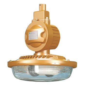 森本 FGQ1104-QL80免维护节能防爆灯 80W电磁感应灯光源,白光,单位:个