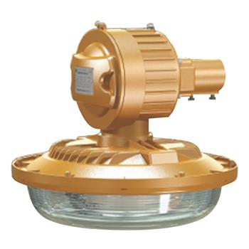 森本 免维护节能防爆灯,50W电磁感应灯光源 白光,FGQ1103-QL50,单位:个