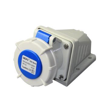 威浦TYP系列明装工业插座,3P 16A 230V IP67 蓝色,8602