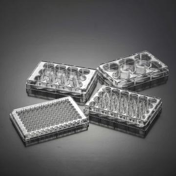 细胞培养板,96孔,U型底,普通型,未表面处理,已消毒,1块/盒,100块/箱