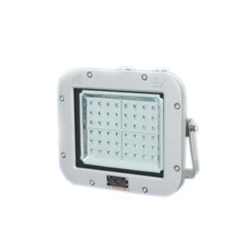 华荣WAROM 隔爆型LED防爆泛光灯,GCD615-XL50,220V 50W 白光5000K,吸顶式
