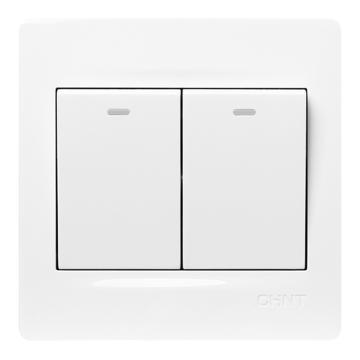正泰CHINT NEW7S系列二联单控开关10A,NEW7-S00300A 白色