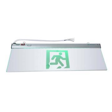 π拿斯特 消防应急标志灯,600大玻璃吊片式,安全出口,N-BLZD-2LROEⅢ8WFAP(P1734)