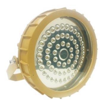 新曙光 防爆LED投光灯,60W白光 支架式,NTK5080,单位:个