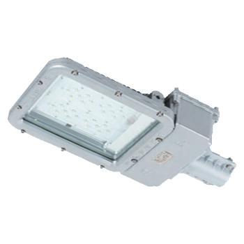 华荣 WAROM 防爆路灯头, RLEEXL5331-XL60W 白光,单位:个