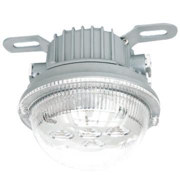 华荣 WAROM  防爆固态安全照明灯 BAD603-15A 吸顶式安装 额定电压220V,单位:个