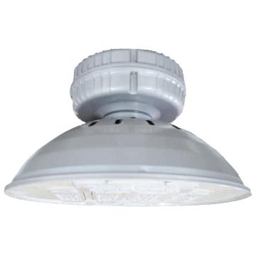 华荣WAROM 固定式LED灯具 GC320-XL100  AC220V 100W,5000K 白光吊杆式100mm