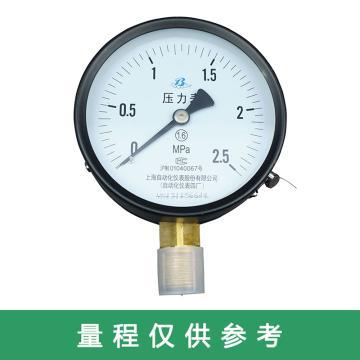 上仪 压力表Y-150,碳钢+铜,径向不带边,Φ150,0~1.6MPa,M20*1.5