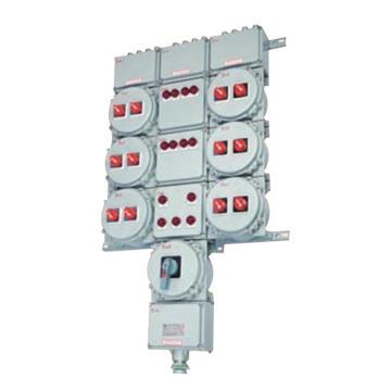 华荣 双电源防爆照明配电箱,BXM(D)53-16/16K40  ExdeIICT6 IP65  铸铝