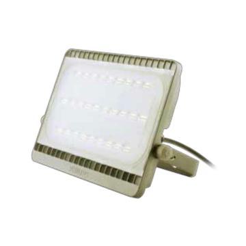 飞利浦 BVP161 LED投光灯 100W 4000K 中性光