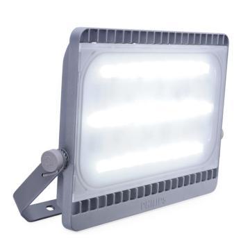 飞利浦 LED投光灯 BVP161 白光 100W 5700K  单位:个