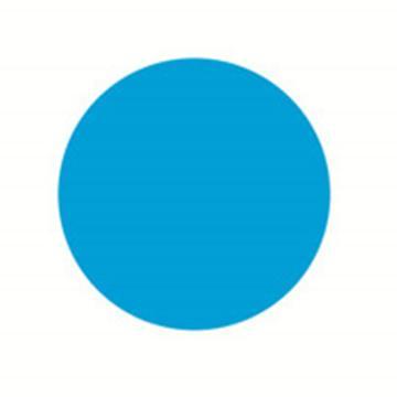 安赛瑞 5S管理地贴-圆型,蓝色,Ф50mm,15789,10个/包