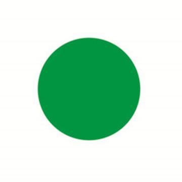 5S管理地贴(圆型)-超强耐磨地贴材料,绿色,Φ50mm,10个/包,15795