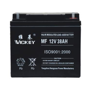 維基 蓄電池,MF12-150,12V,150AH