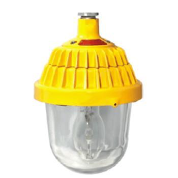 深圳海洋王 BPC8720 防爆平台灯,单位:个
