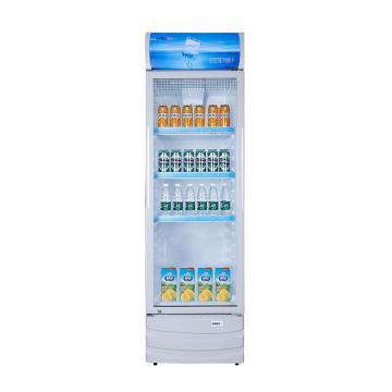 星星 236L单门防凝雾玻璃门商用冷藏冰箱,LSC-236C