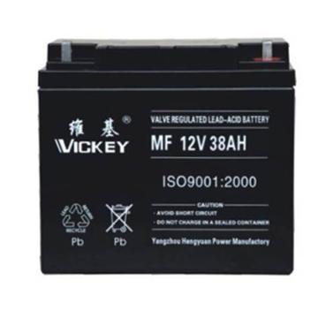 维基 蓄电池 MF12-200AH
