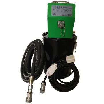电动加油机,220V 适用于5kg标准油脂桶,WFP500