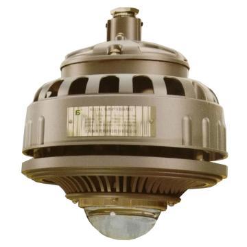 森本 FGA6200-LED60 LED灯 60W 管吊式安装 90度出光角 白光,单位:个