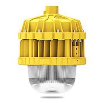 南华机电 LP205A LED防爆区域照明灯 45W 白光 支架式安装