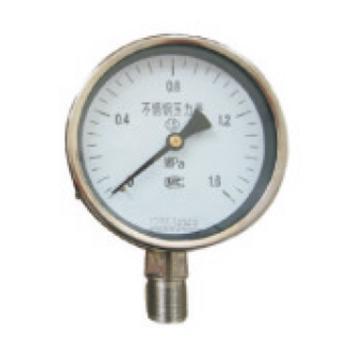 安徽旺能 不锈钢压力表,Y-100 0-1MPa M20*1.5