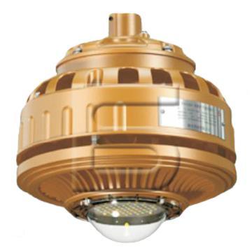 森本 LED免维护节能防爆灯FGV1208-LED60 功率60W 白光 吊管式安装A 含防爆接线盒含0.3米吊管,单位:个