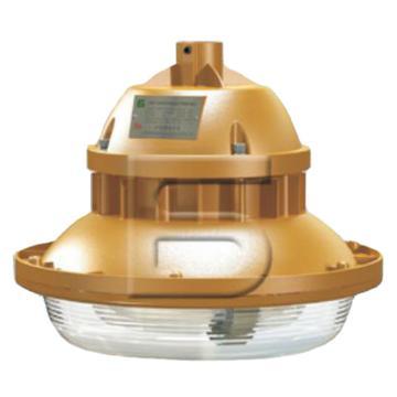 森本 免维护节能防爆灯 FGV1107-QL40 管吊式安装(不含接线盒、吊管、防爆活接头),单位:个