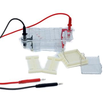 DYCP-31CN型瓊脂糖水平電泳儀(小號),六一