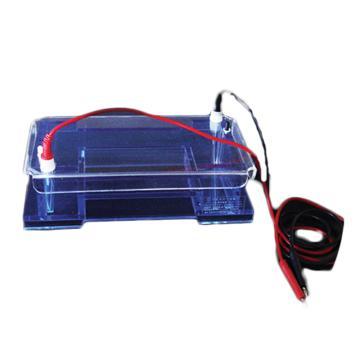 DYCP-32A型琼脂糖水平电泳仪(中号),六一