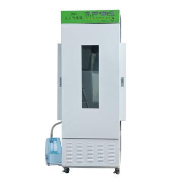 智能人工气候箱,50%~90%,有光照:10~50℃;无光照:5~50℃,RQX-250B