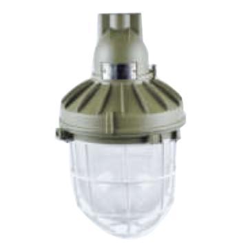 飞策 防爆灯 CAD62-400X1 吸顶式E40不含光源 含接线盒适配长小于303mm节能灯泡,单位:个