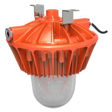 中跃 LED防爆泛光灯 ZY-8110-80W 白光 吸顶式安装 含转接板