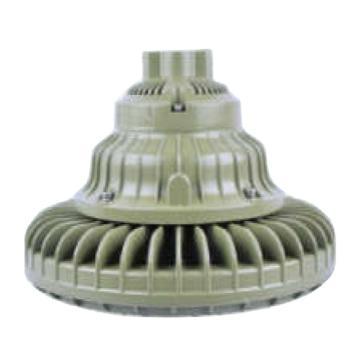 飞策 LED灯防爆,BAD63-120WG 泛光 120W 白光 吊杆式 含接线盒 含300mm吊杆,单位:个