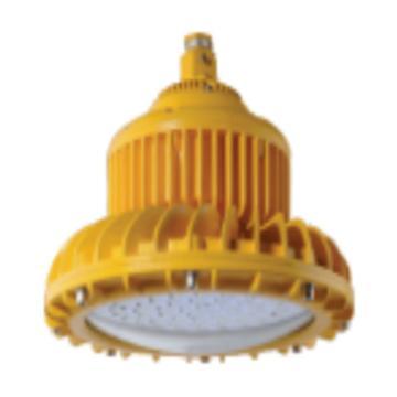 津达 KD-FBD-001C LED免维护防爆灯,功率20W 白光 管吊式安装 含防爆接线盒 含0.3米吊杆,单位:个