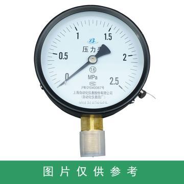 上仪 压力表Y-100,碳钢+铜,径向不带边,Φ100,0~2.5MPa,M20*1.5