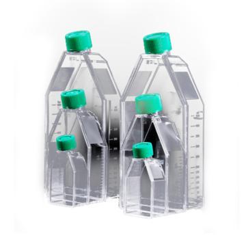 175cm²培养瓶,PS,,450ml,密封盖,TC处理,灭菌,5个/包,8包/箱,科进,Kirgen,KG21175