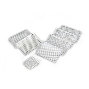 96孔细胞培养板,TC处理,PS,平底,灭菌,1块/包,50包/箱,科进,Kirgen,KG10096