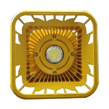 行知照明 防爆罩棚灯 FB2306A,100W,5000K 支架式安装,单位:个