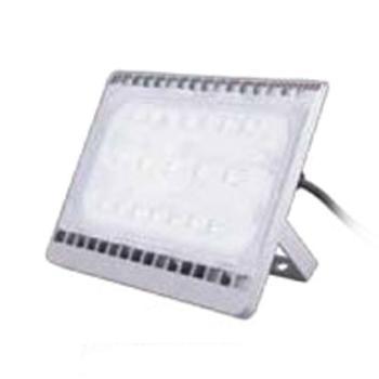 飞利浦 LED泛光灯  50W LED泛光灯BVP161 LED39 中性光 4000k