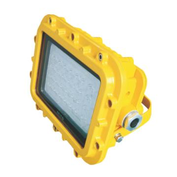 森邦照明 LED防爆泛光灯,SPF332 功率20W 白光6000K U型支架装,单位:个