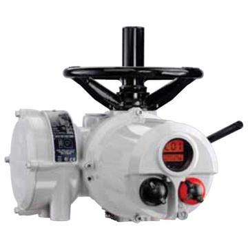 羅托克 多轉式執行器,IQM12F10B4,調節型,B4,380V-3-50,控制方式:5010-100