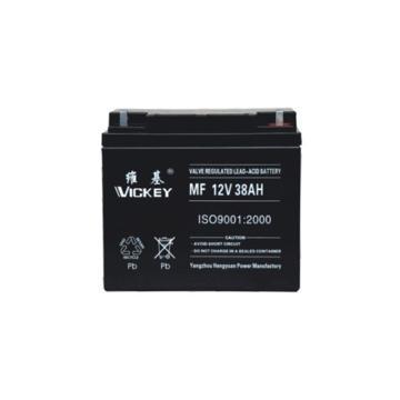 维基 蓄电池,12V-38AH