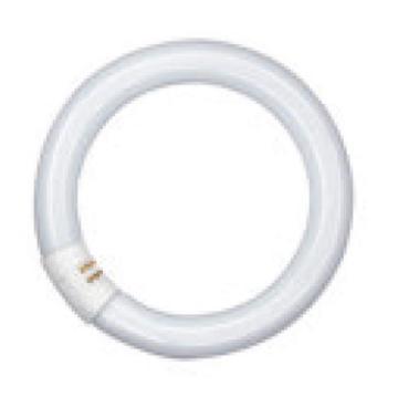 欧司朗环形节能荧光灯管吸顶灯T9环管 22W/765 三基色 电梯灯管 粗管,单位:个