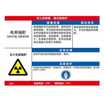 安赛瑞 职业病危害告知卡-电离辐射,ABS板,600×450mm,14591