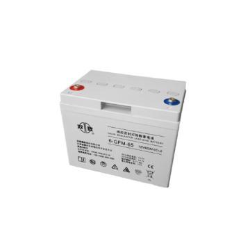 雙登 閥控密封式鉛酸蓄電池,6-GFM-65