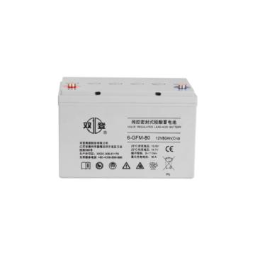 雙登 閥控密封式鉛酸蓄電池,6-GFM-80