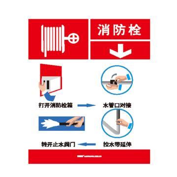 安赛瑞 灭火设备使用标识-消防栓,不干胶,200×260mm,20423