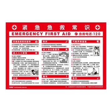 安赛瑞 紧急急救常识,ABS板,75cm×50cm,30401